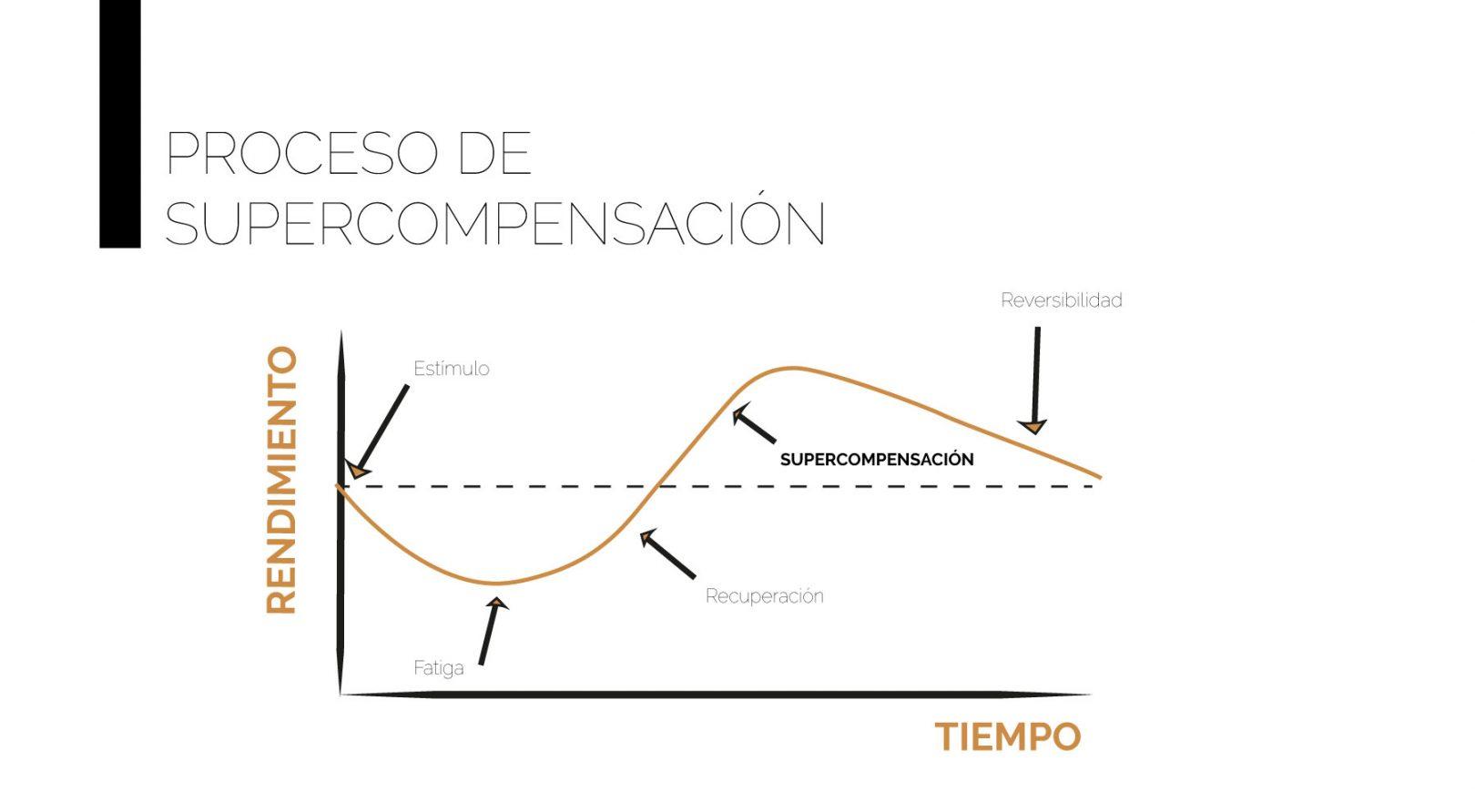 trainingnorte_proceso_supercompensacion